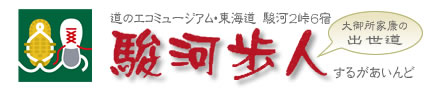 道のエコミュージアム・東海道駿河2峠6宿 駿河歩人(するがあいんど)